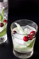 Holiday Cheers: Stand n' Sip Mixology