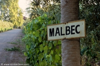 Mad for Malbec